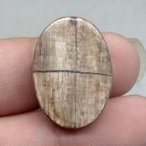gambar Batu Akik Fosil Pamor Tapak Jalak Coklat Asli natural ciri khasiat harga bacaan khodam mustika_3