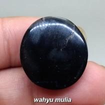 harga mahar jual Fosil Batu Galih Kelor Hitam Coklat asli mustika berkhodam bacaan ciri jenis kegunaan cara aktif langka_3