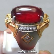 Gambar Batu Cincin Merah Garnet Srilangka Asli bersertifikat selon pria wanita ciri harga khasiat_3